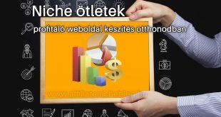 Niche ötletek profitáló weboldal készítés otthonodban